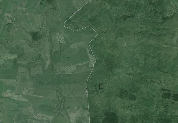 v-ulyanovskoj-oblasti-ne-isplzuetsya-40-tysyach-gektarov
